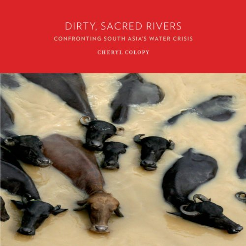 Dirty, Sacred Rivers audiobook cover art