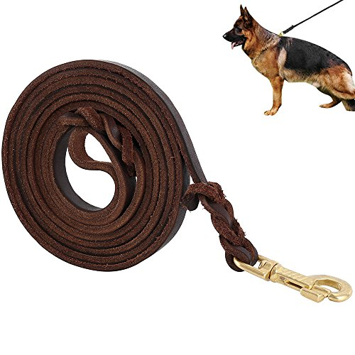LITTLEGRASS Premier Braided Leather Dog Leash 6/8/10 ft for Strong Medium Large Dogs, Leather Heavy Duty Training Leash (10FT)