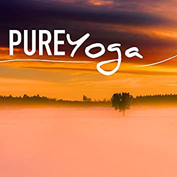 Pure Yoga - Music for Healthy Massage, Holistic Healing & Sounds of Nature for Meditation