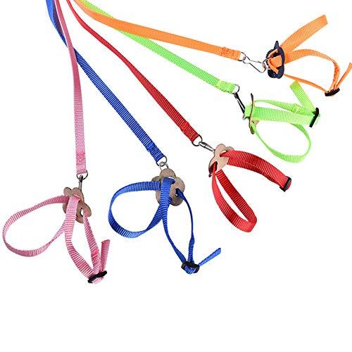 ETbotu Trainingsleine für Hunde, Leine für Katzen und Haustiere – 8 Formen, fliegende Trainingsleine für Papagei, Vogel, Hamster, Schildkröte, Eidechse