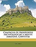 Campagna di prospezioni archeologiche a Monte Abbatone, Cerveteri (Italian Edition)