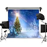 Kate 10x6.5ft/3m(W) x2m(H) Holiday Winter Photography Backdrops Frozen Background Large Snowy Background Photography Studio Prop