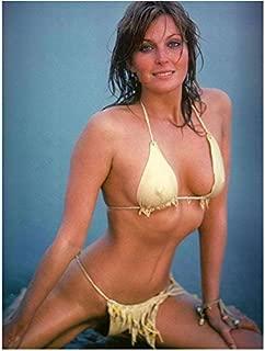Bo Derek as Jane Parker in Tarzan and the Ape Man bikini shot 8 x 10 Inch Photo