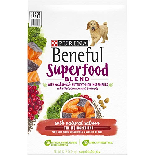 Beneful Superfood Blend Dry Dog Food with Salmon (M)