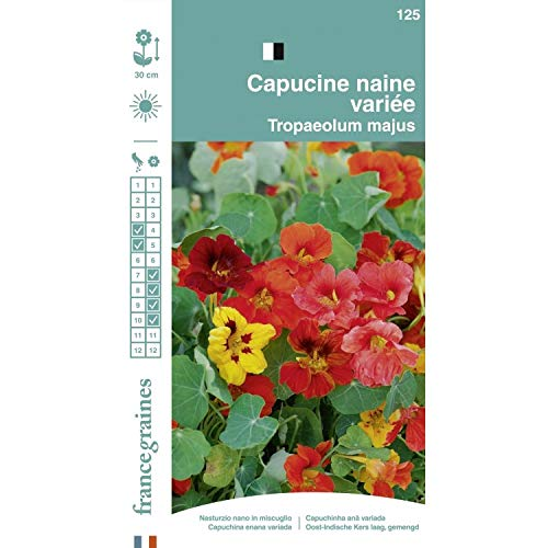 France Graines - Capucine Naine MIX