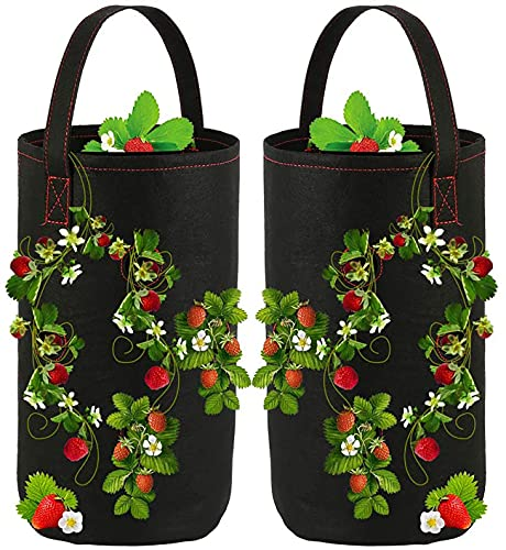 JWKK 2Pcs Breathable Hanging Strawberry Grow Bags,Strawberry Grow Bags,Breathable Non-Woven Fabric Reinforced Handle Growing Bag, Suitable for Planting Strawberry, Flower (Black)