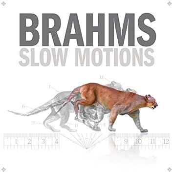 Brahms Slow Motions
