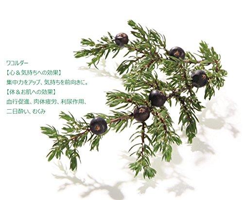 クナイプバスソルトグーテエアホールングウィンターグリーン&ワコルダーの香り850g[医薬部外品]
