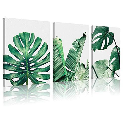 Lienzo decorativo para pared estilo nórdico con diseño de plantas verdes para sala de estar, dormitorio, baño, 3 piezas de 30,5 x...