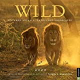 Wild 2020 Wall Calendar: Untamed Animals, Untouched Landscapes