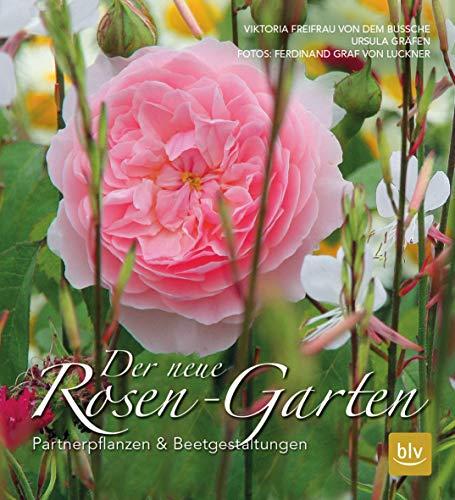 Der neue Rosen-Garten: Partnerpflanzen & Beetgestaltungen