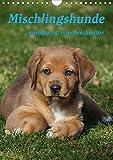 Mischlingshunde (Wandkalender 2021 DIN A4 hoch)