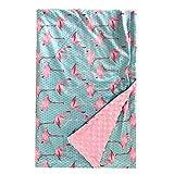 illikkuyax Baby Receiving Blanket, 30 x 47 Inches Plush Blanket with Double Layer Dotted Backing, Cozy Minky Fleece Flamingo Baby Blanket for Newborn Boys, Girls