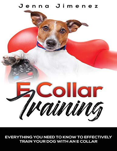 E Collar Training: Everything You Need to Know to Effectively Train Your Dog with an E Collar