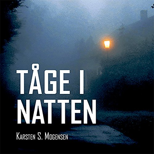 Tåge i natten audiobook cover art