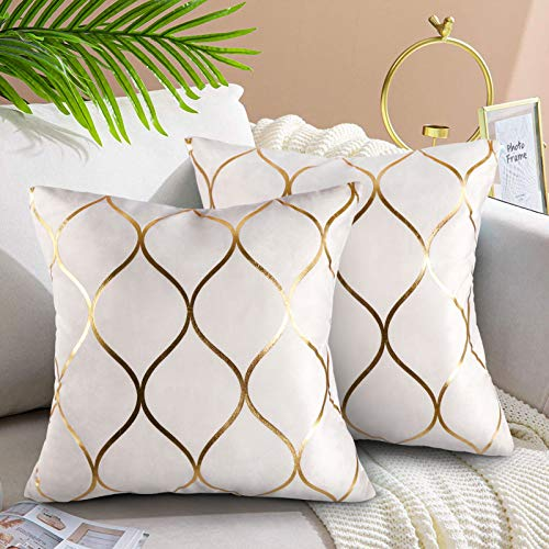 Hanrunsi Velvet Cushion Covers 18x18 Decorative Velvet Sofa Cushions 2 Pack Soft Pillowcases Golden Painted Decorative Throw Pillow Cases White for Sofa Couch Living Room