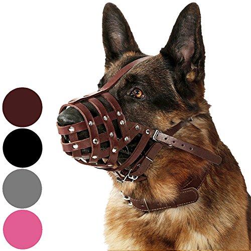 CollarDirect Maulkorb für Hunde, Deutscher Schäferhund, Dalmatiner, Dobermann, Lederkorb, mittlere und große Rassen, Schwarz / Braun (L, Kastanienbraun)