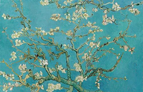 Pintar por números para Adultos Van Gogh Flores de Almendra – Pintura para Pintar por números con Pinceles y Colores Brillantes - Cuadro de Lienzo con numeros pre Dibujado fácil de Pintar – Van Gogh