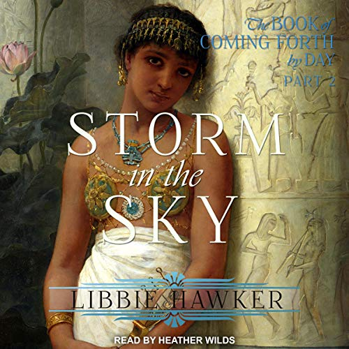 Storm in the Sky audiobook cover art
