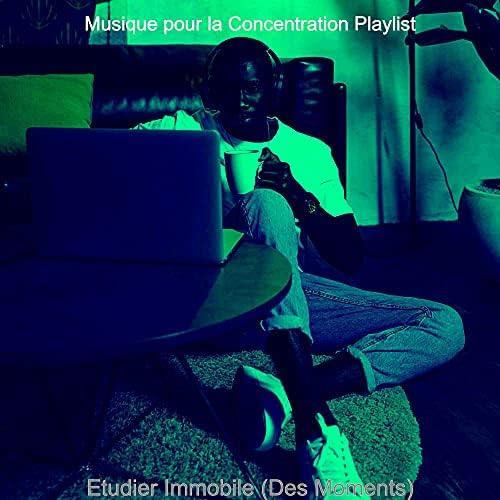 Musique pour la Concentration Playlist