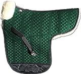 Engel Germany Tapis de Selle en Peau de Mouton Couleur Coton Vert Fourrure Vert (Sadek 1) Concours Complet d'équitation (CCE) Combinez-Vous avec 12 Coleur de Peau de Mouton