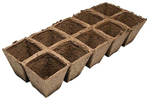Biotop Macetas cuadradas (5,5 x 5,5 cm), 30 Unidades, B2006