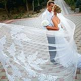 Velo de Novia de una Sola Capa Lianshi Bridal Veil Encaje Bordado de la Novia Suministros 3 m (Blanco)