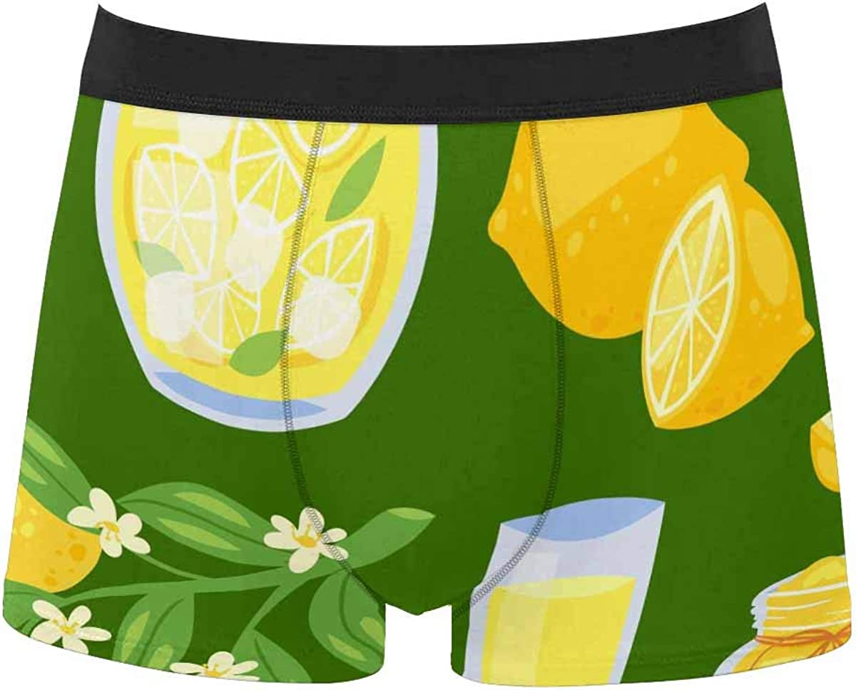 InterestPrint All Over Print Boxer Stretch Underwear for Mens Juniors Boys Autumn Faliing Leaves