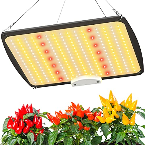 LED Grow Lights, 100W Grow Lights 3x3ft Coverage, Full Spectrum Use Mean Well Driver and Daisy Chain Dimmable, Seedling Veg & Flower Growing Lamps 238pcs by PANDVILLOW