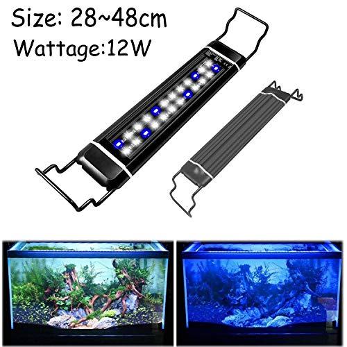 Lightess Luce dell'acquario Lampada per Acquario 24 LED 12W Aquarium Lighting Pesce Impermeabile IP66 Ultra Sottile Luci Bianco e Blu per Acquario 30-48 cm, Spina EU