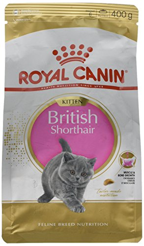 Royal Canin KITTEN British Shorthair Katzenfutter 400g (3er Packung)