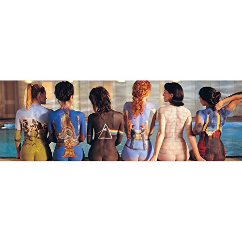 Pink Floyd - Back Art (Slim) 36'x12' Art Print Poster