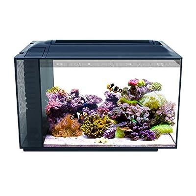 Fluval EVO Marine Aquaium Kit with Reef LED Lights - 57 ltr by Hagen