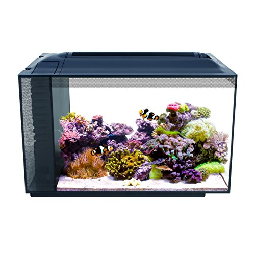 Fluval Sea Evo XII Saltwater Fish Tank Aquarium Kit, Black, 13.5 gal, 10531A1