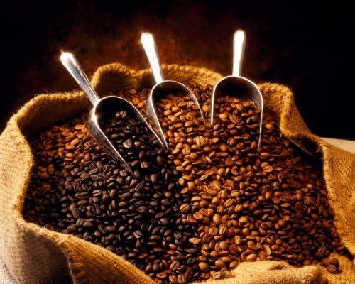 Papua New Guinea Organic Estate Coffee Beans Medium Roast Full City 5 Pounds Whole Beans product image