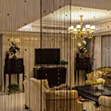 String Curtain Self-Adhesive Door Curtain Crystal Beaded Screen Panel Fringe String Curtain Beaded Curtains for Door Wall Window Wedding Coffee House Decorative (Black 40x80inch) (1, Self Adhesive)