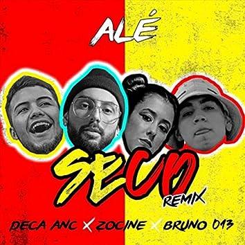 Seco (Remix)