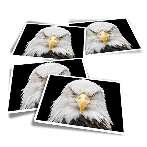 Pegatinas rectangulares de vinilo (juego de 4) – American Bald Eagle Bird of Prey divertidos adhesivos para ordenadores portátiles, tabletas, equipaje, reserva de chatarra, frigoríficos #44081
