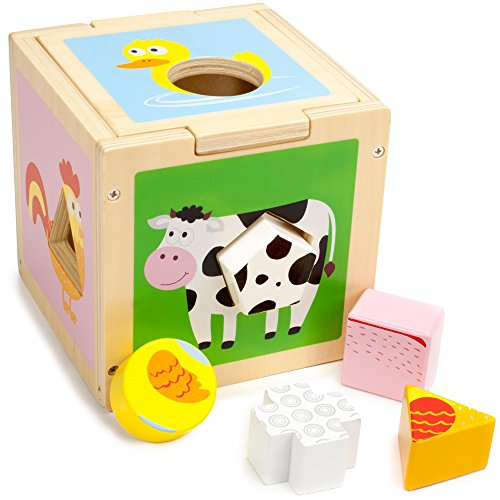 Barnyard Shape Sorter - Farm Animals Infant and Baby Activity Manipulative - Sorting Cube Encourages Motor Skills and Critical Thinking - Traditional Wooden Learning Toy for 1 Year Olds
