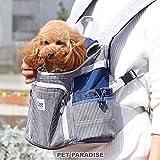 ペットパラダイス Lee ヒッコリー ハグ&リュック 抱っこ キャリー バッグ【超小型犬】 998-55590