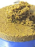 Caviar Top selection gold hybride beluga 1 kg