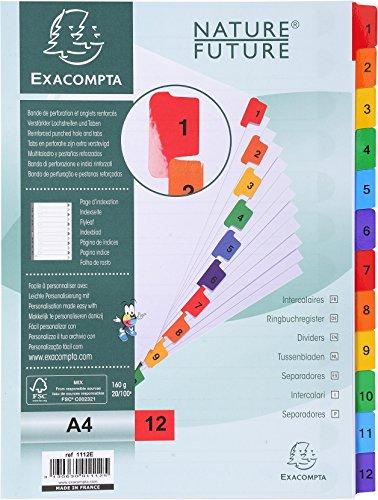 Exacompta 1112E Packung mit Register, Karton weiß 160g/m², 12 bedruckten Taben, für DIN A4, Indexseite, 1 Pack, farbig sortiert