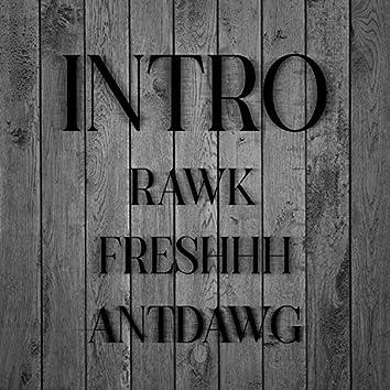 Intro (feat. Rawk)