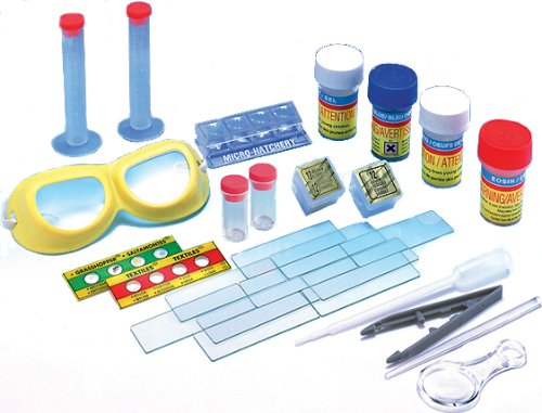 Edu-Toys  Slide Making Kit