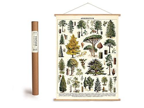 Vintage Poster Set mit Holzleisten (Rahmen) und Schnur zum Aufhängen, Motiv Bäume, Wald