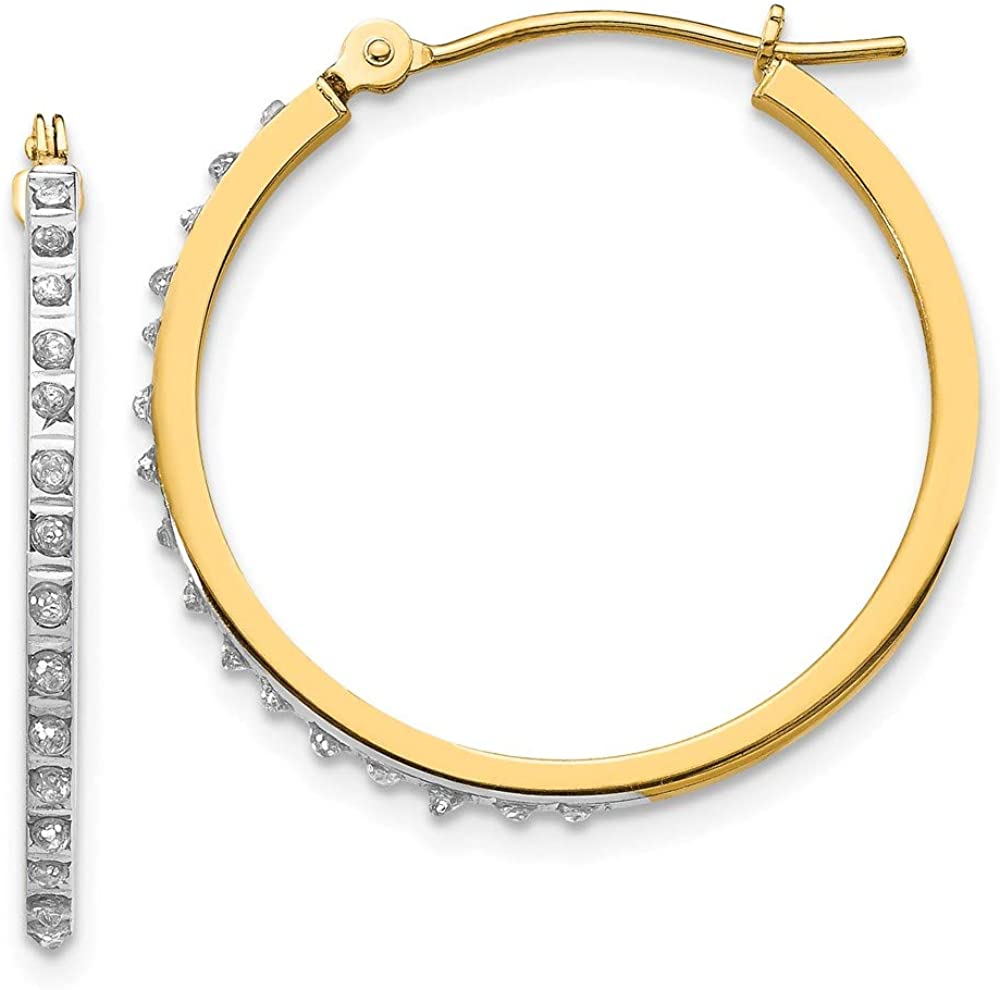 14k Special Campaign Yellow Gold Max 45% OFF Diamond Fascination Hinged Earrings Round Hoop E