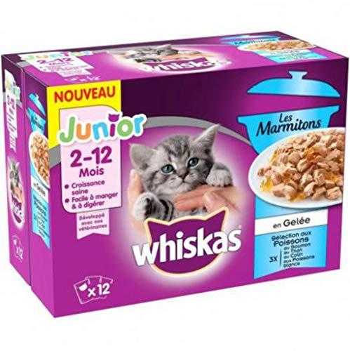 WHISKAS Les Marmitons Junior - Sachets fraicheur aux poissons en gelee - 4 varietes - Pour chaton - 12 x 85 g