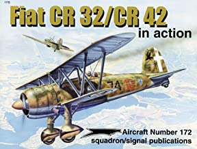 Fiat CR 32/CR 42 in action - Aircraft No. 172