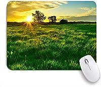 EILANNAマウスパッド 秋の午後太陽光線日没オーストラリア田舎朝の自然屋外 ゲーミング オフィス最適 高級感 おしゃれ 防水 耐久性が良い 滑り止めゴム底 ゲーミングなど適用 用ノートブックコンピュータマウスマット