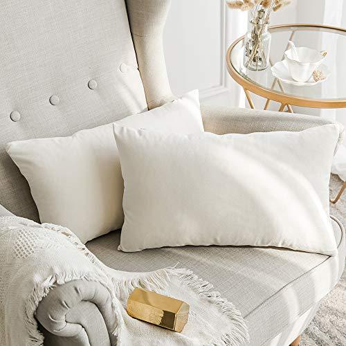 MIULEE Confezione da 2 Federe in Velluto Copricuscini Decorativi Fodere Quadrate per Cuscino per Divano Camera da Letto Casa30X50cm Bianco Crema